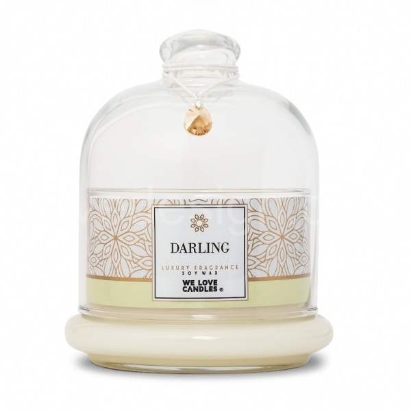 SCENTED SOY CANDLE DARLING